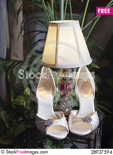 Free Vertical: Wedding Shoes, Lamp & Plants Stock Images - 28937594