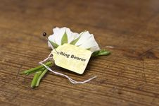 Free Ring Bearer S Boutonnière Royalty Free Stock Photography - 28937867