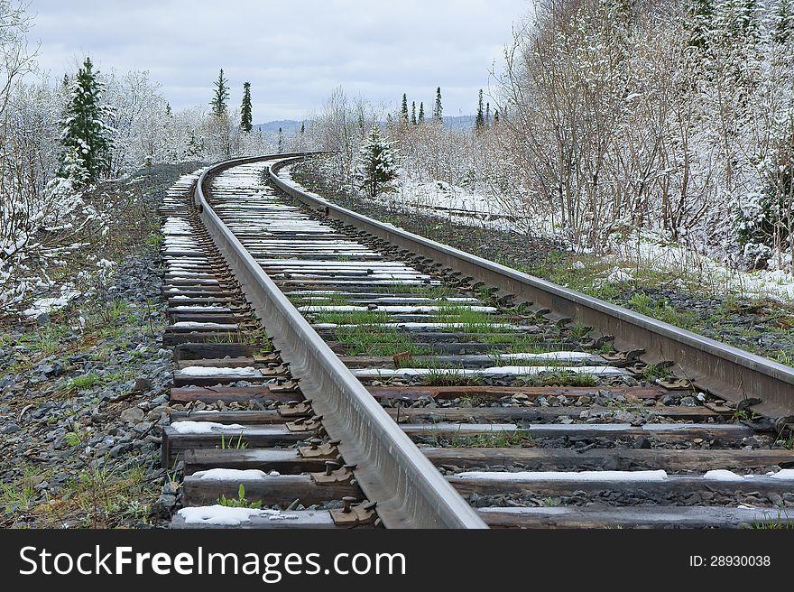 Railroad amongst snowy forest.