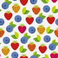 Free Berry Background Stock Images - 28941954