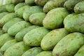 Free Raw Mango Stock Photos - 28948013