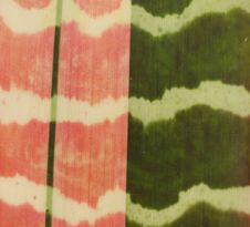 Bromeliad Leaf Texure Royalty Free Stock Image
