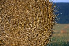 Free Harvested Hay Stock Photos - 28950643