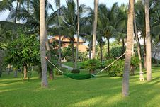 Hammock In  Manicured Park Garden Royalty Free Stock Photo