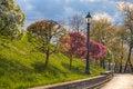 Free Lamps On A Hill Near A Suburban Sidewalk Stock Photos - 28964753