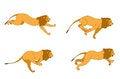 Free LION RUN Stock Photography - 28967572