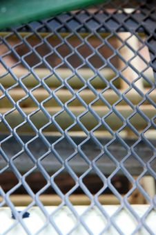 Free Grid Mesh. Royalty Free Stock Photo - 28964175