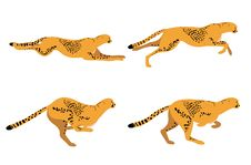 Free Cheetah Run Royalty Free Stock Photos - 28967558