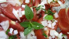 Free Tomato Salad With Basil Royalty Free Stock Photos - 28973538