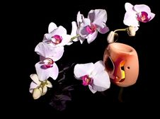 Free Orchid And A Burning Candle Stock Images - 28973724