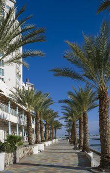 Free The Main Promenade In Eilat, Israel Stock Images - 28975404