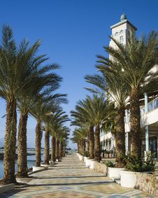 Free View On Main Promenade In Eilat, Israel Royalty Free Stock Images - 28975479