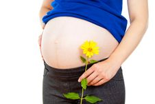 Pregnant Woman Holding A Flower