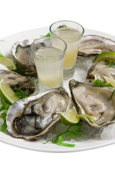 Free Fresh Oysters Stock Photos - 28990913