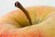 Free Apple Macro, Stem Royalty Free Stock Images - 290909
