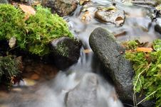 Free Blurry Stream Stock Photo - 291390