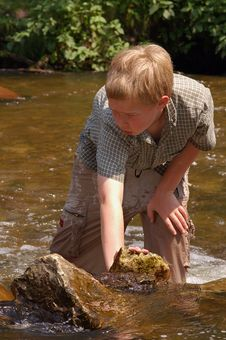 Free Playing In A Creek On A Hot Summer Day Stock Photos - 295063