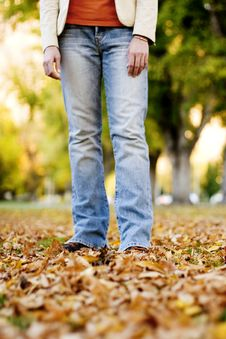 Free Standing In Fall Royalty Free Stock Photos - 295388