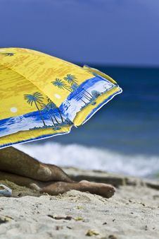 Free Colorful Umbrella On A Sunny Beach Royalty Free Stock Photo - 2902745