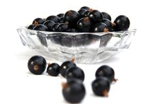 Free Currants Isolated In White Royalty Free Stock Images - 2908729