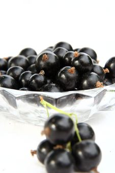 Free Currants Isolated In White Royalty Free Stock Photography - 2908737