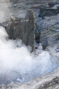 Free Forest Stump Still Smouldering Royalty Free Stock Photography - 2909107