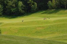 Free Golf Stock Image - 2909981