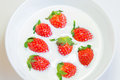 Free Fresh Strawberry In Fresh Milk Stock Photos - 29005623