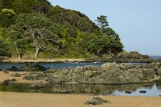 Free Wild Beach In New Zealand Royalty Free Stock Images - 29000309