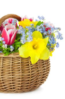 Free Bouquet Of Spring Flowers In Basket  / Stock Photos - 29002593