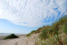Baltic Sea Shore Royalty Free Stock Photo