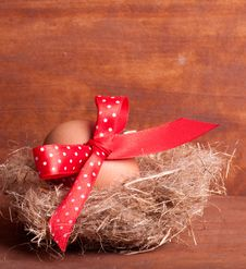 Free Easter Egg In The Nest With A Red Ribbon Stock Image - 29008451