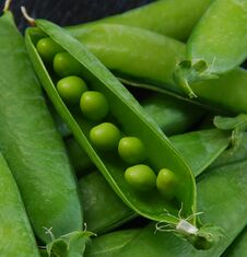 Free Green Peas And Pods Royalty Free Stock Photography - 29011517