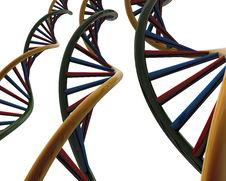 Free DNA Stock Images - 29014764