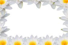 Free Frame Lotus Stock Images - 29019524