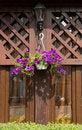 Free Petunia Flower  And Street Lantern Stock Photos - 29025803