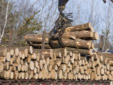 Free Stacking Logs Royalty Free Stock Photos - 29038668