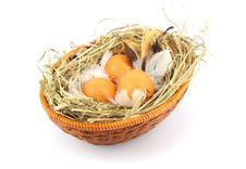 Free Eggs In Basket Royalty Free Stock Photo - 29045285