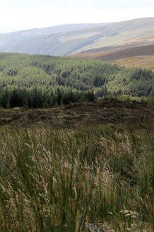 Free Irish Countryside Stock Image - 29072251