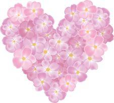 Free Roses Shaped Heart Stock Photography - 29075412