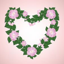 Free Wreath Of Rose Royalty Free Stock Photography - 29075457