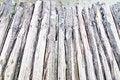 Free Bamboo Path Stock Photos - 29099553