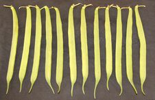 Free Runner Beans. Royalty Free Stock Images - 29092899