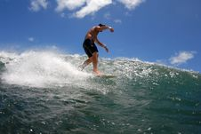Free Surf Waling The Board Royalty Free Stock Photography - 2910857