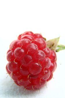 Free Raspberry Royalty Free Stock Photos - 2915888