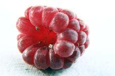 Free Raspberry Royalty Free Stock Image - 2915896