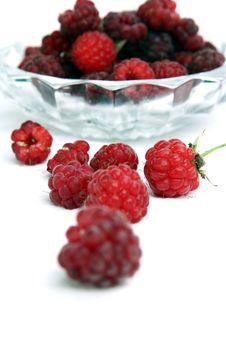 Free Raspberry Royalty Free Stock Photography - 2915927