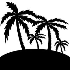 Free Vector Illustration Of Palm Trees . Royalty Free Stock Photos - 29107598