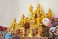 Free Buddha Statues Stock Photos - 29118213