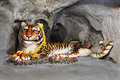 Free Tiger Cave Royalty Free Stock Photo - 29119035